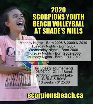 scorpions beach volleyball